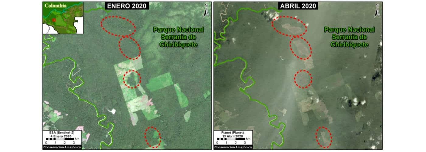 Deforestación en la Amazonía colombiana