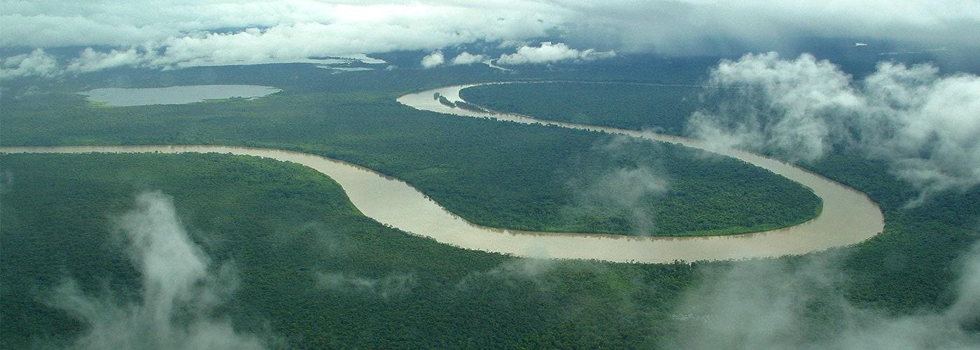 Plantaciones forestales en Colombia