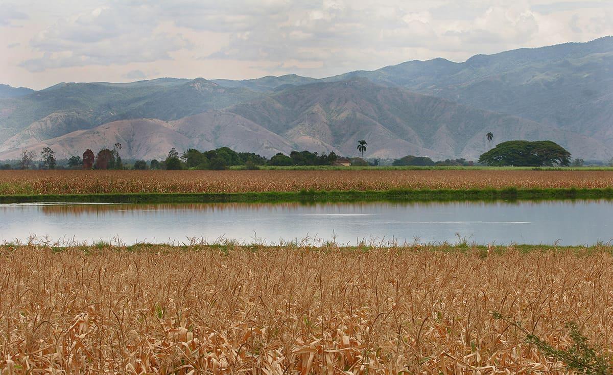 biodiversidad-alimentos-ecosistemas