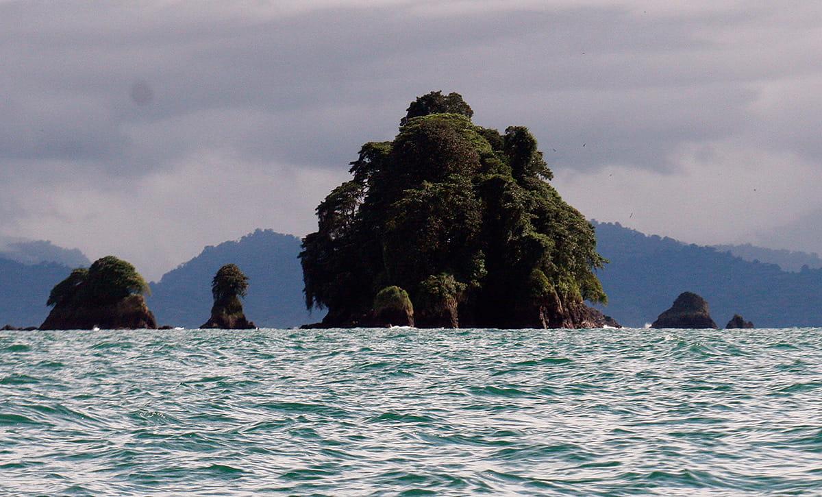 biodiversidad-océanos-utrÍa