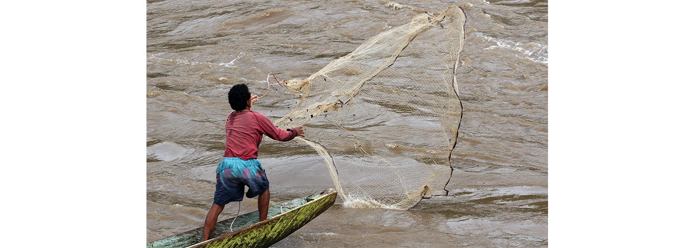 Mares-pescadores-alimentos