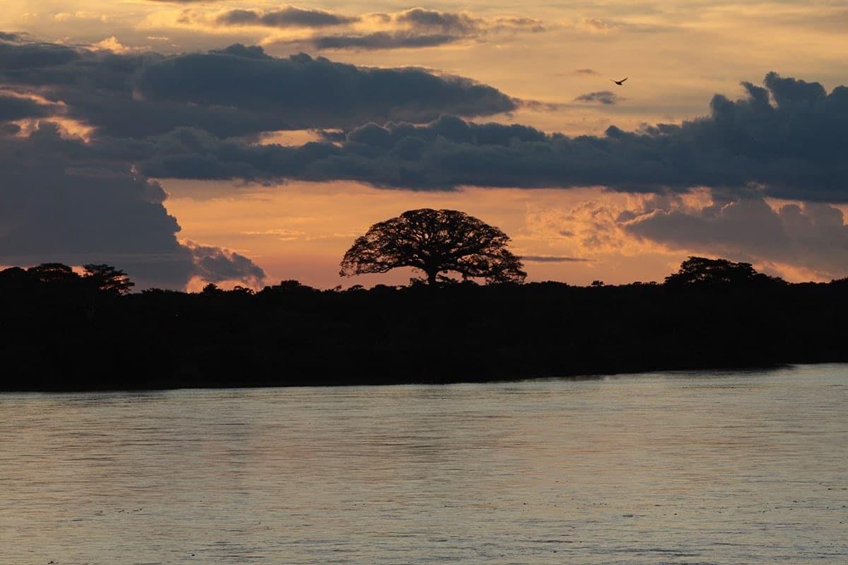 biodiversidad-rios-minambiente