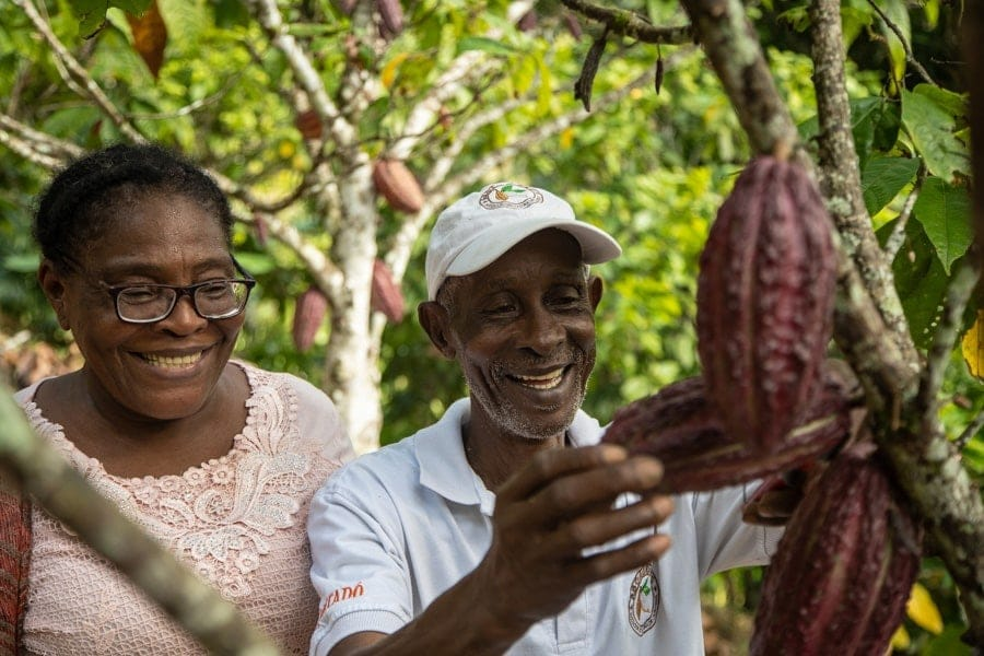 Proyecto-Cacao-Urabá