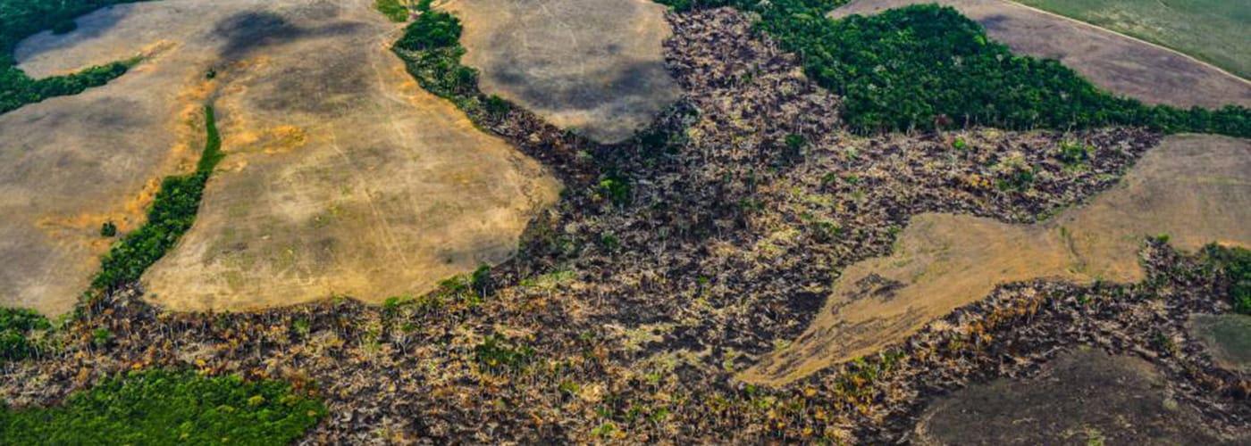 amazonia-deforestacion-pactoglobal