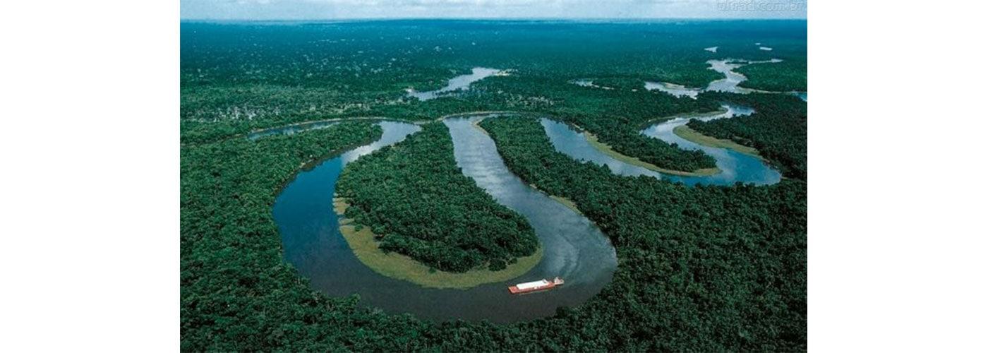Colombia deforestó 140 mil hectáreas de selva amazónica en 2020