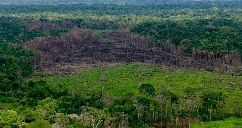 deforestación en Chiribiquete