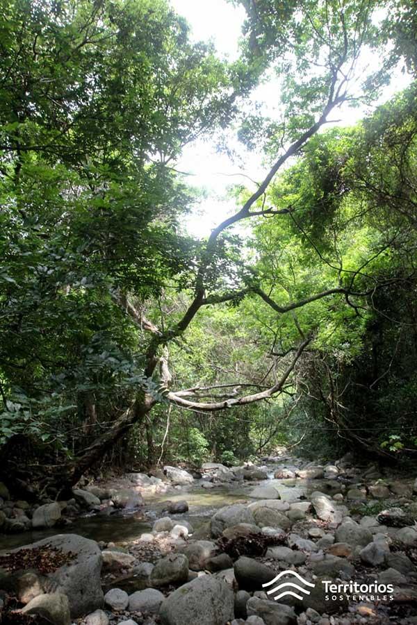 Gobernanza del agua, Colombia