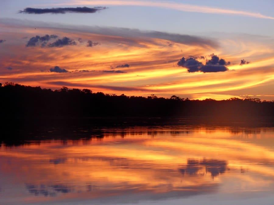 La Amazonia y Orinoquia Guayanesa , regiones colombianas