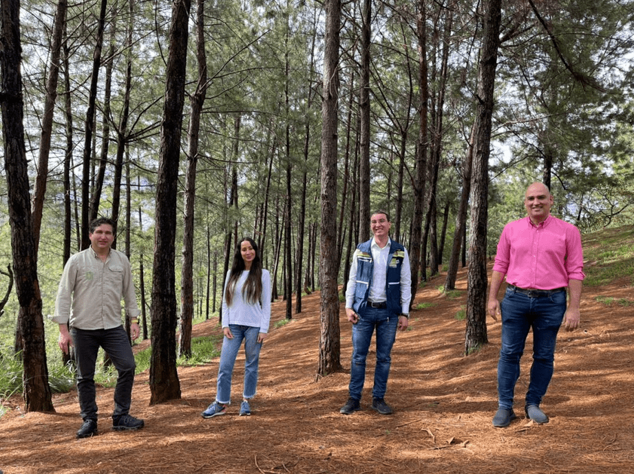 área protegida del Cerro Quitasol