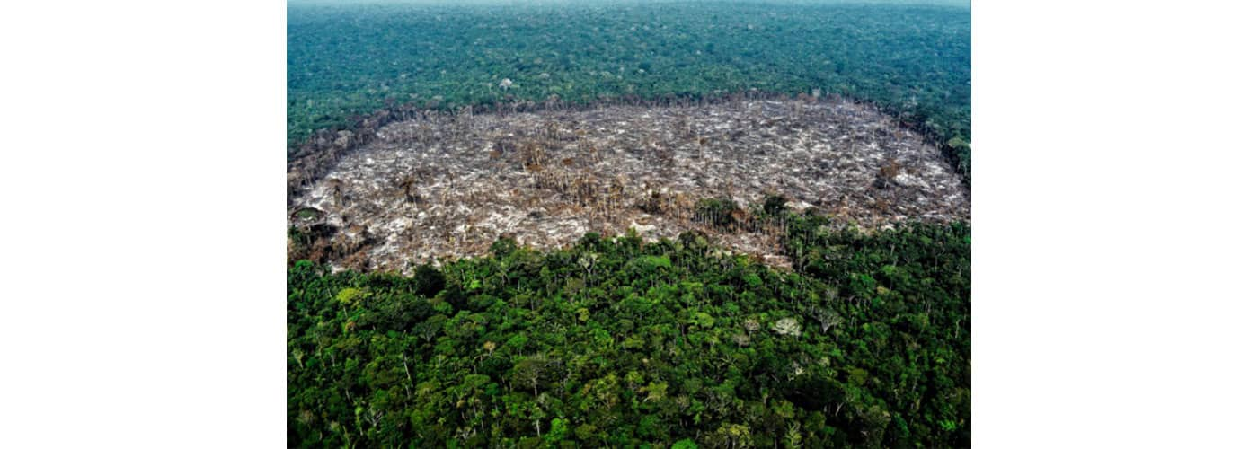 Deforestación en el Parque Nacional Natural Serranía de Chiribiquete