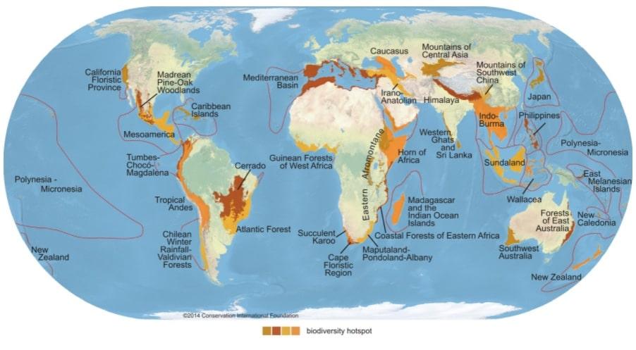 Puntos críticos (hotspots) de biodiversidad en el mundo