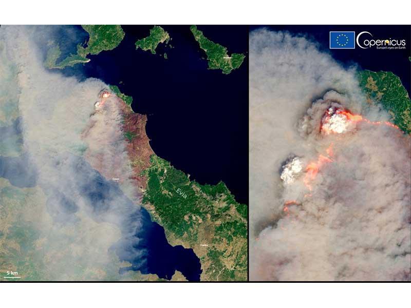 Incendios forestales, Mediterráneo