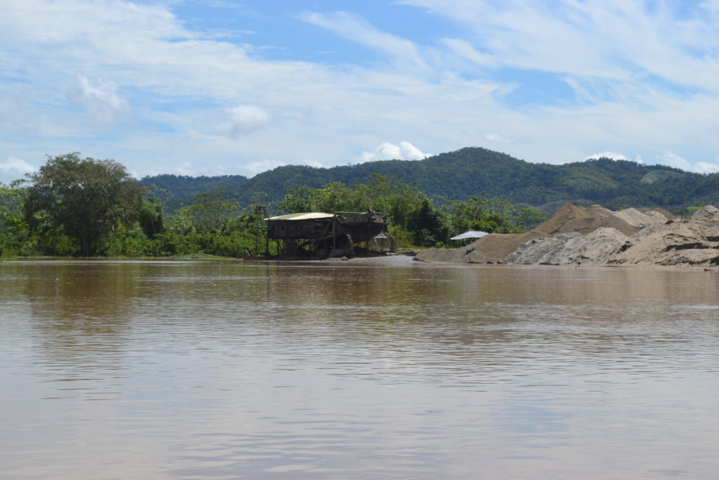 hectáreas de bosque en el Bajo Cauca antioqueño